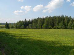 Slavkovský les